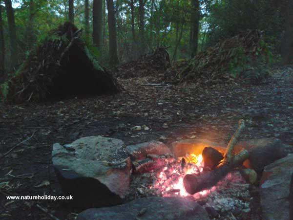 Essential Wilderness Survival Skills