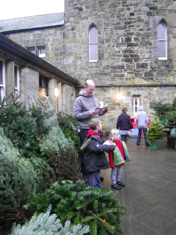 Kielder Castle Christmas Tree Sales