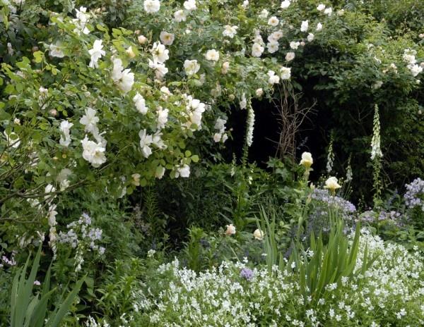Mindrum Garden 3