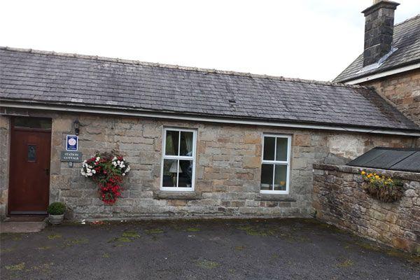 Station Cottage Flowers