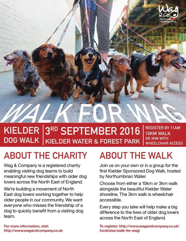 The Kielder Dog Walk,
