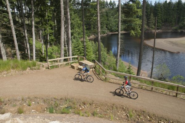 Kielder Water & Forest Park is North East's greatest place