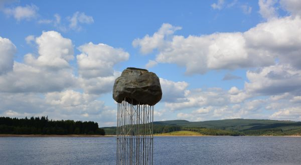 Dramatic new perch for lucky Kielder birds