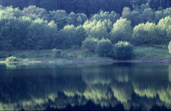 Bakethin Weir at Kielder Water