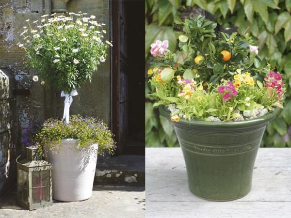 Errington Reay flower pots