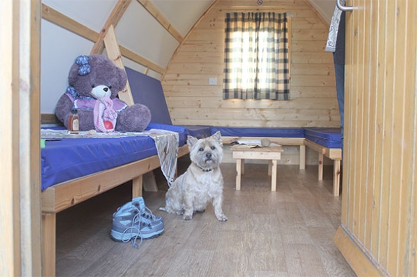 Pet-Friendly Wigwam Cabins