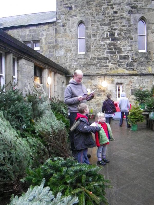 Kielder Castle Christmas Tree Sales