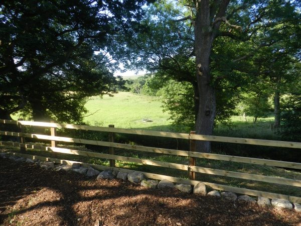 Fresh air and nature