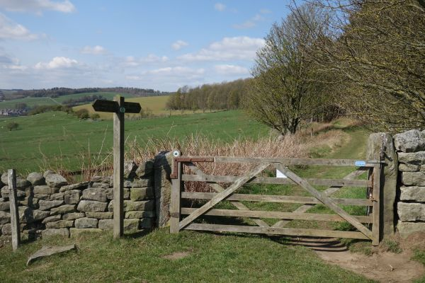 Local walks - Fourstones