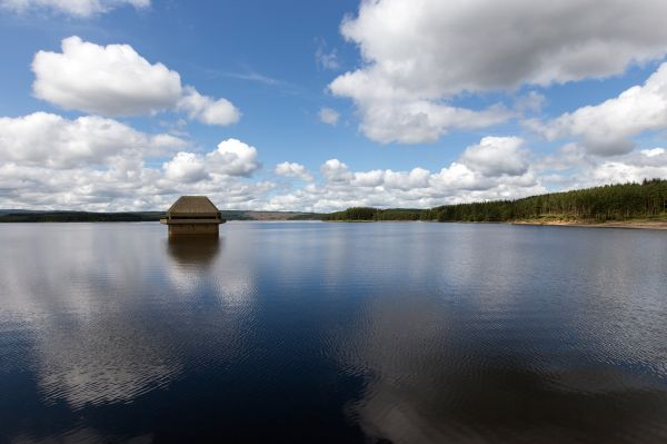 Vote for Kielder and Win a Prize!