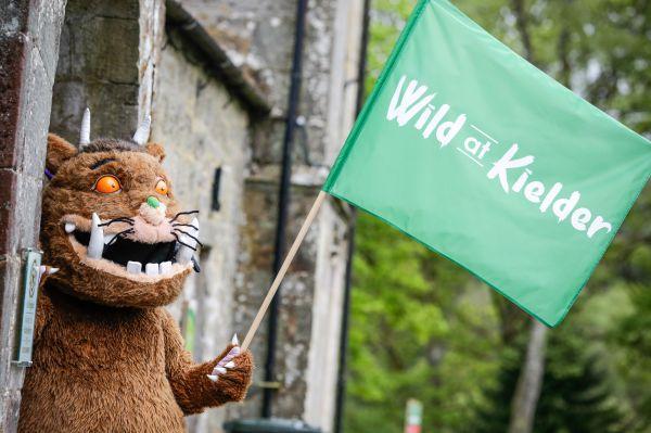Wild at Kielder