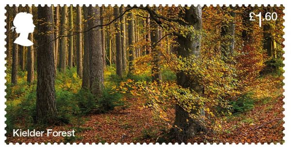 Kielder among six forests on new Royal Mail stamps